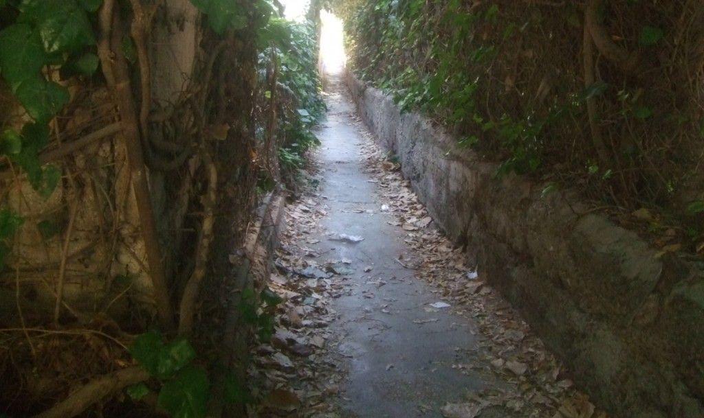 משהו המציא שם לשביל בין רחוב עזה לרחוב מטודלה (ראו בתמונה הבאה)