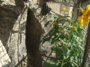 יציאה של התעלה הכנענית החוצה